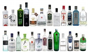 25-gins-1024x624