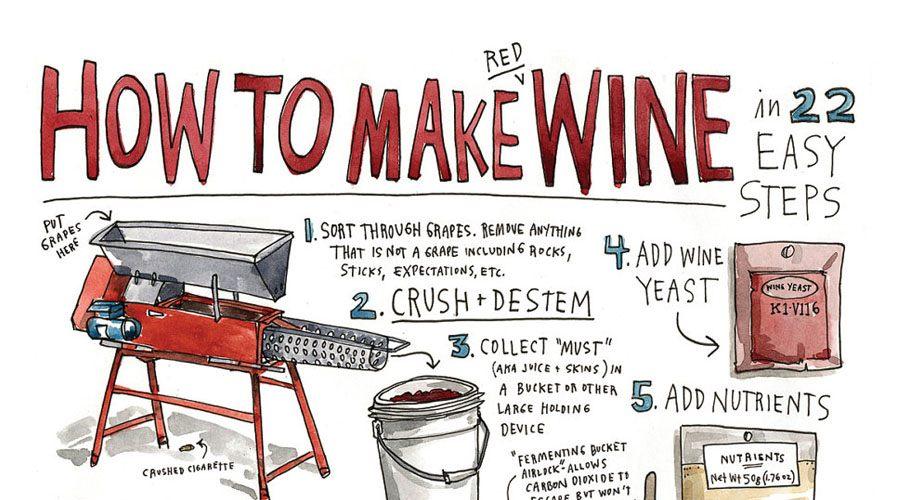 Comment faire son vin?