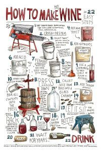 how-to-make-red-wine