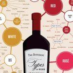 Infographie : les différents types de vin