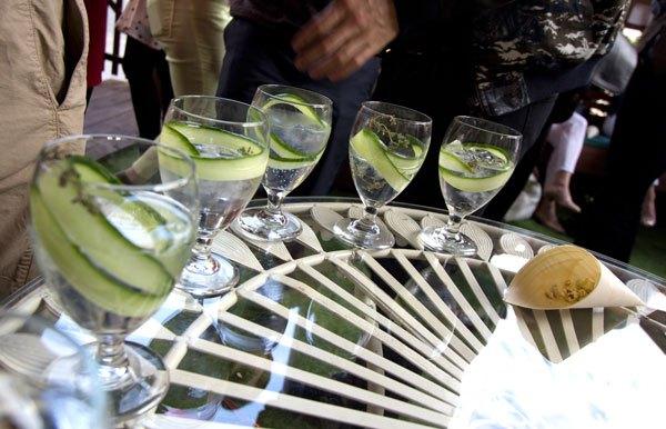 gilbert-scott-gin-garden
