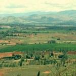 A la découverte des vins de Madagascar !