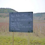 Saint Vincent tournante 2014 Bourgogne