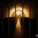 Laurent-Perrier Champagne - Caves 2 - ForGeorges