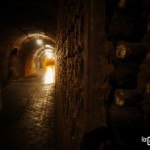 Laurent-Perrier Champagne - Caves 7 - ForGeorges