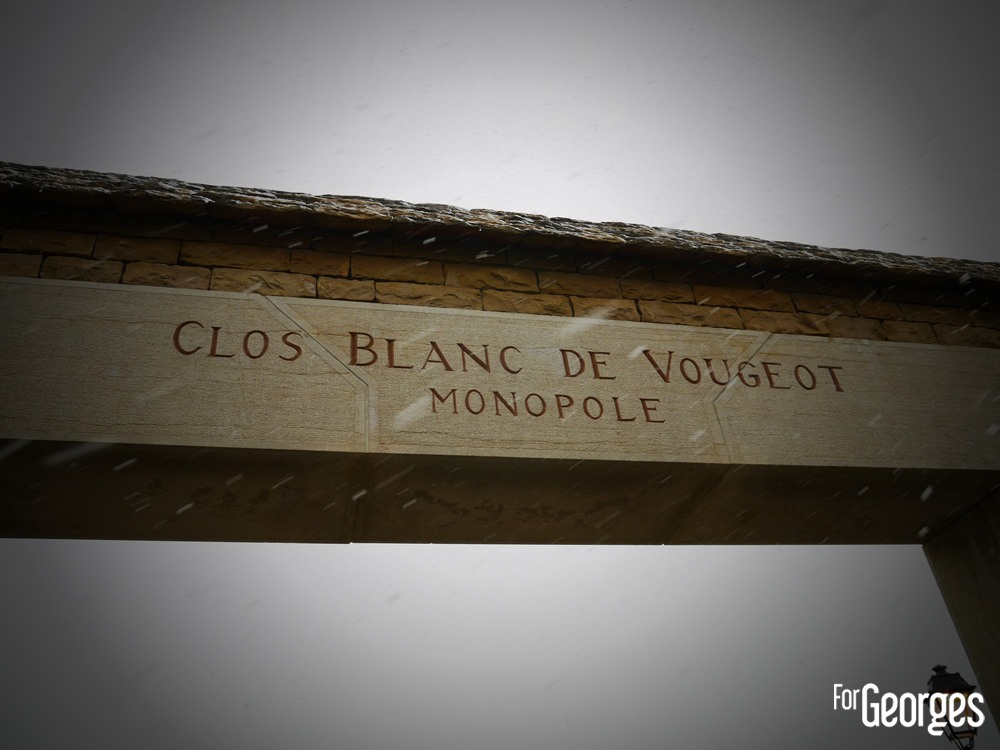 ForGeorges Saint Vincent Clos Vougeot