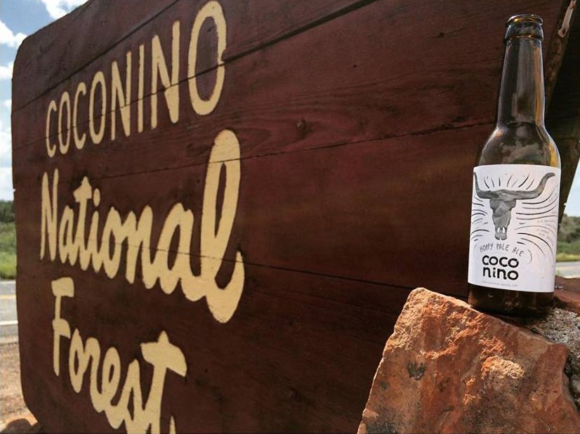 Coconino beer at Coconino national forest