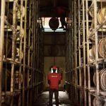 Bonne nouvelle : la Martinique va faire vieillir du whisky ?