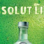 Absolut lime : le citron vert en plus de la vodka