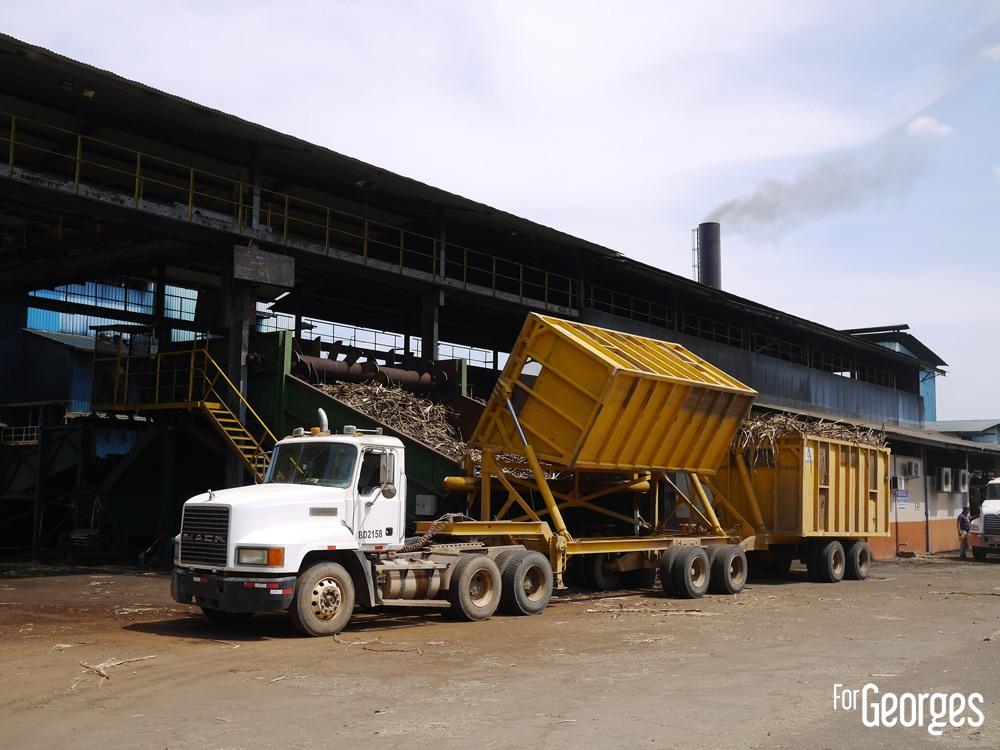 Déchargement Canne à sucre Distillerie Ron Abuelo au Panama