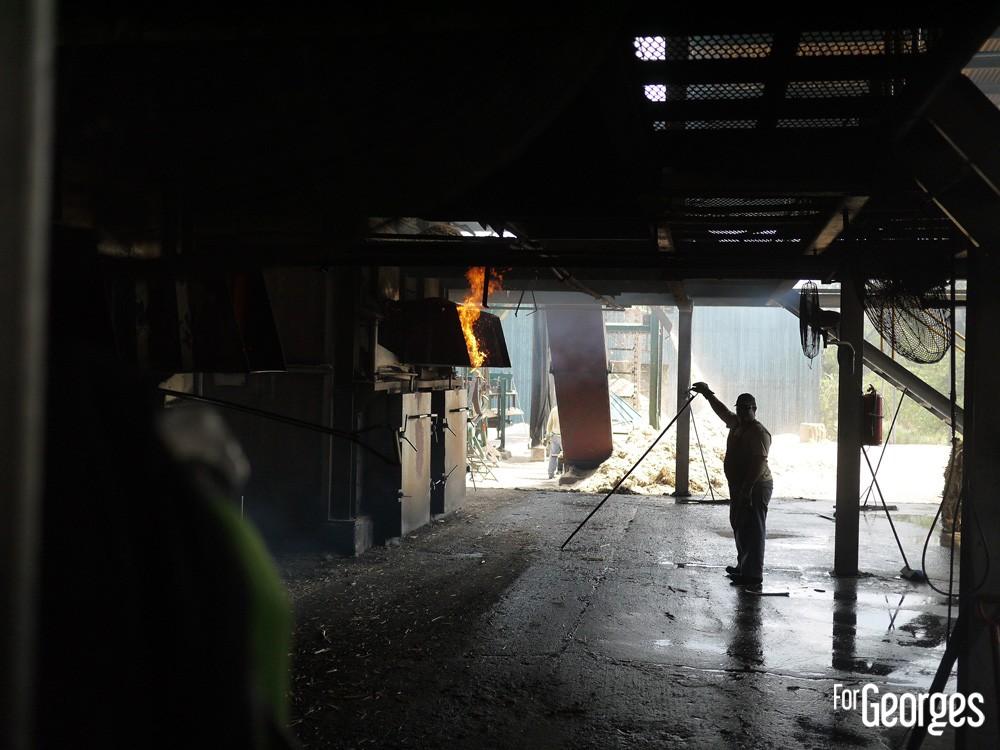 Distillerie Ron Abuelo au Panama