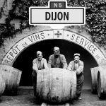 Bientôt du vin made in Dijon ?