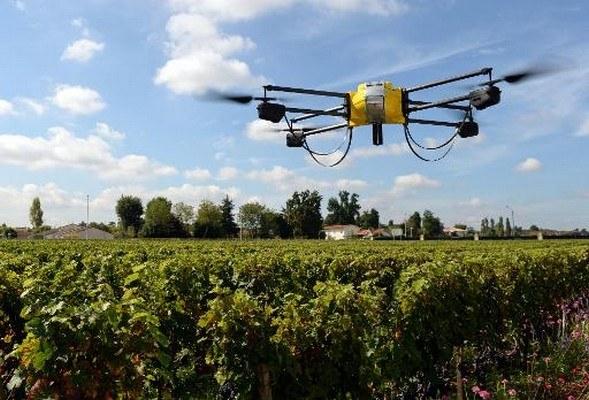 drone au dessus des vignes