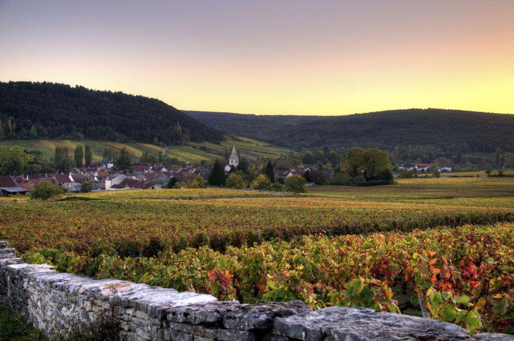 Cité des vins de Bourgogne  à Beaune