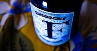 Ferdinand Gin allemand