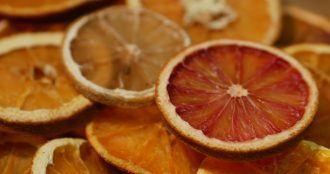 oranges séchées faciles à faire à la maison