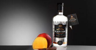 Black Cane Bologne